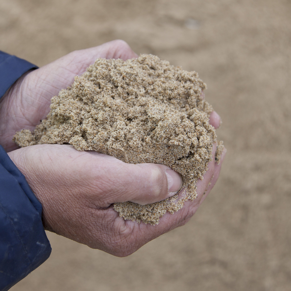 sable, cbd, port de boulogne